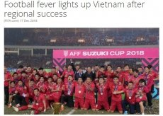 Regional success inspires football fever in Vietnam: FIFA