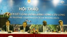 Seminar to promote regional coordination in Mekong River Delta