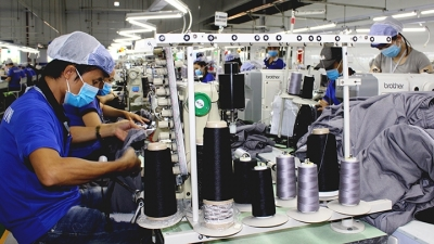 Promoting growth of garment and textile exports