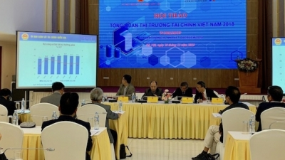 Vietnam's growth estimated at 6.9-7% in 2018: NFSC