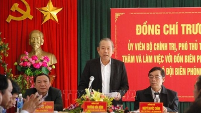 Deputy PM works with Quang Tri on smuggling prevention