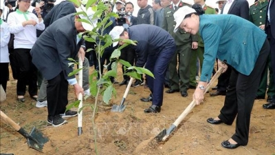 NA Chairwoman attends tree planting festival in Hoa Binh