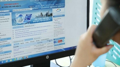 ADB, WB promote online bidding in Vietnam