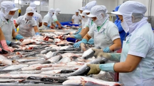 Vietnam's tra fish exports to UK up almost 70% in value