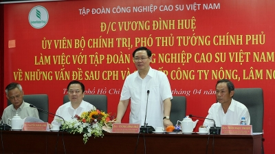 Vietnam Rubber Group urged to aim for US$10 billion revenues