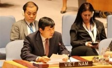 Vietnam vows to join int'l efforts in ending sexual violence during conflict