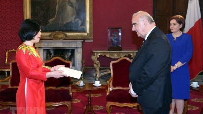 Vietnam wants to promote relations with Malta: Ambassador