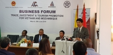 Vietnam, Mozambique seek to enhance trade and investment ties