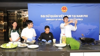 Vietnam makes active contributions to ASEAN Festival Day in South Africa