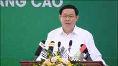 Agricultural cooperatives develop in both quantity and quality: Deputy PM