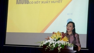 Health minister urges stronger efforts to prevent dengue fever