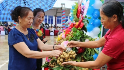 Son La launches export of locally-grown longan