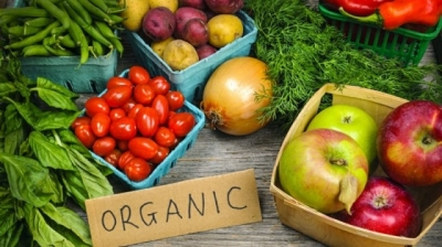 ASEAN builds standards for organic products