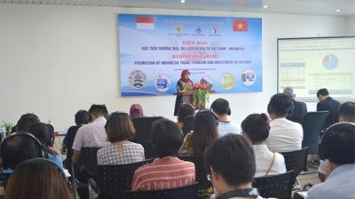 Vietnam promotes trade, tourism, investment cooperation with Indonesia