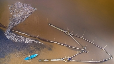 "Poetic scene in Mekong River Delta in ""floating season"""