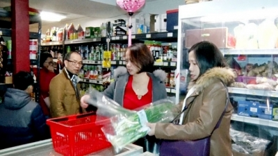 Overseas Vietnamese in France welcome Lunar New Year