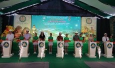 Work starts on Green Mekong international school in Kien Giang province