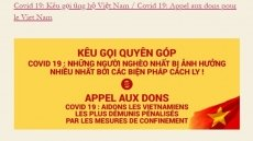 Vietnamese in France support COVID-19 fight