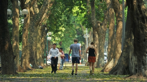 Hanoi vibrant in leaf changing season