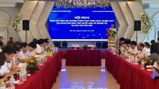 Conference reviews development of information technology industry