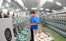 Vietnam's economy gradually regains growth momentum