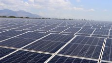 Nhon Hai Solar Farm inaugurated in Ninh Thuan Province