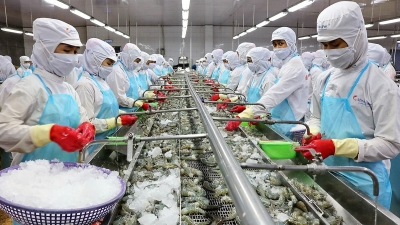 Shrimp exports to US forecast to soar 20% in 2020