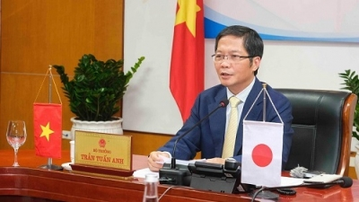 Vietnam, Japan foster cooperation in industry, trade, energy
