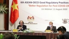 Webinar seeks better regulation for economic growth amid COVID-19