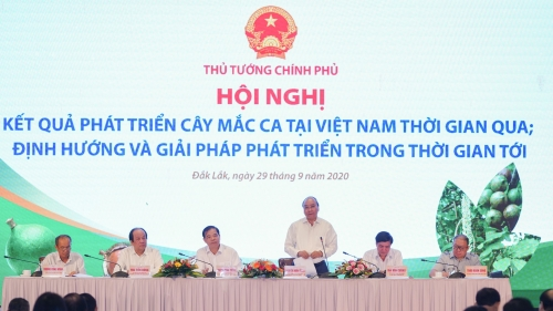 Conference on developing macadamia trees in Vietnam