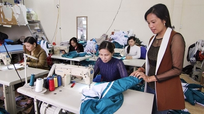 Caring for and protecting legal and legitimate rights and interests of Vietnamese women