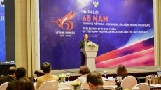 Seminar reviews Vietnam – Indonesia relations