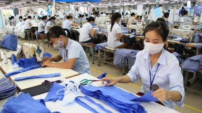 Vietnam sees 2,100 new enterprises in first week of 2021