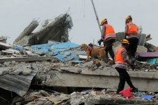 Sulawesi quake death toll at 81 as Indonesia battles series of disasters