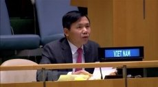 Vietnam supports UNMISS's activities: Ambassador