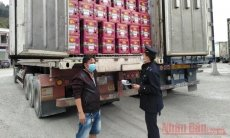 Over 5,000 tonnes of agricultural products exported daily through Tan Thanh Border Gate