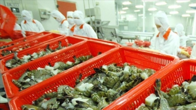 Aquatic exports rise 3% in first quarter