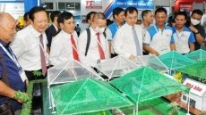 Vietnam aims at US$4 billion of shrimp export revenue in 2021