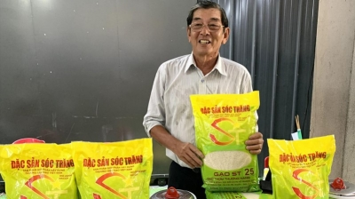Vietnam Trade Office protects ST24 and ST25 rice trademark in Australia