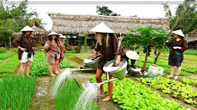 Vietnam's agritourism aims to tap massive potential - Nhan ...
